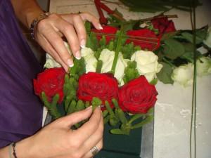 Jardin de roses